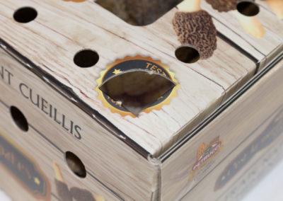 009-scatola-test-004