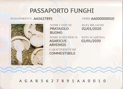 agaricus-arvensis-prataiolo-buono-s-sfondo