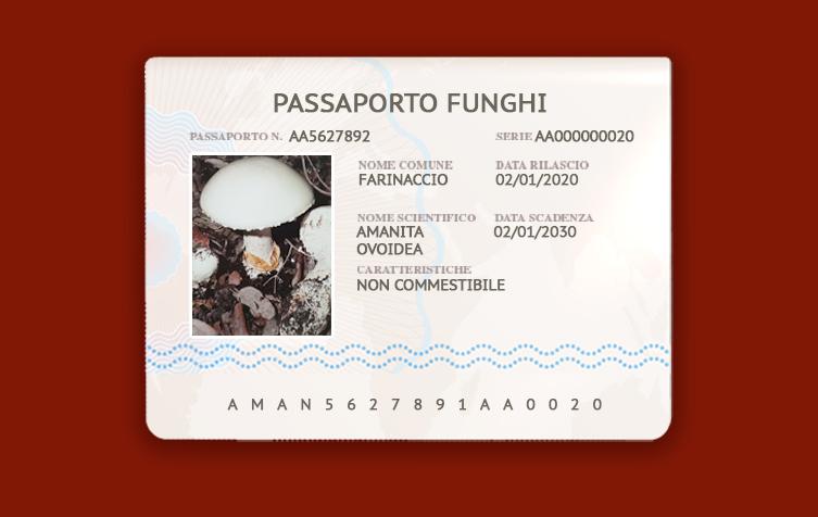 amanita-ovoidea-farinaccio-conoscere-i-funghi