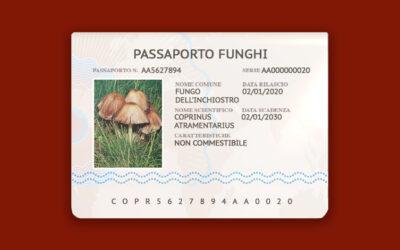 Coprinus Atramentarius – Fungo dell'inchiostro