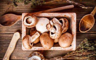 Alimentazione: le proprietà benefiche dei funghi