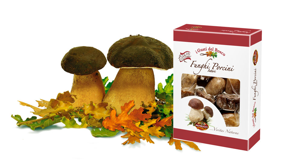 Funghi Porcini | I Gusti del Bosco | Petrucci